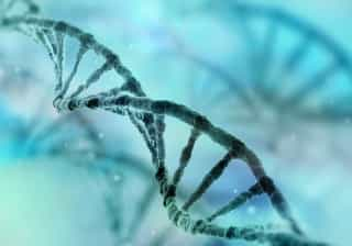 """66% das mutações que causam câncer ocorrem por """"falta de sorte"""""""