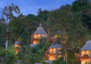 Cresce procura por hotéis no topo de árvores; veja 10 opções