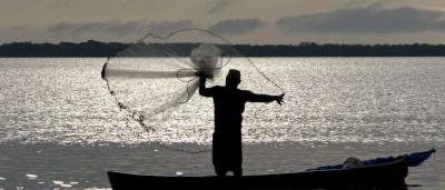 Proibição de pesca de 15 espécies é adiada para 2018