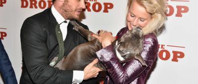 Veja o amor de Tom Hardy pelos seus cães; fotos!