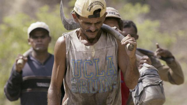 Brasil vira exemplo negativo no combate ao trabalho escravo
