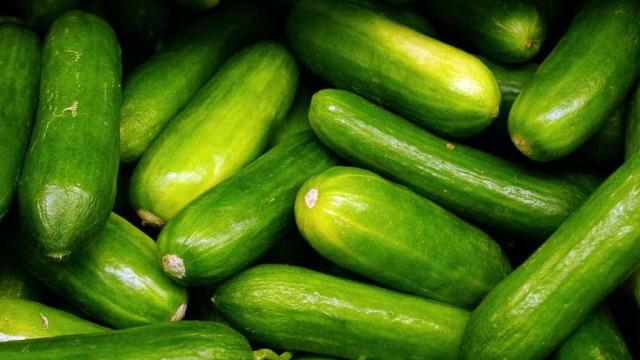 Pepino: conheça os benefícios dessa fruta surpreendente