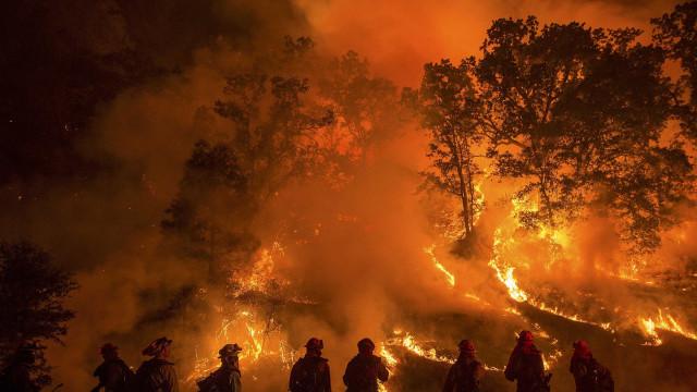 Incêndio na Califórnia mata 42 pessoas e destrói 5 mil casas