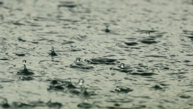 Chuva forte empilha casas e desabriga centenas na Zona da Mata de MG