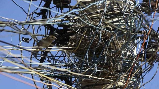 Manutenção da rede elétrica retira cabos soltos do centro de SP