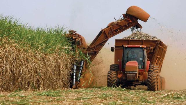 Usinas priorizam etanol e produção bate recorde em abril