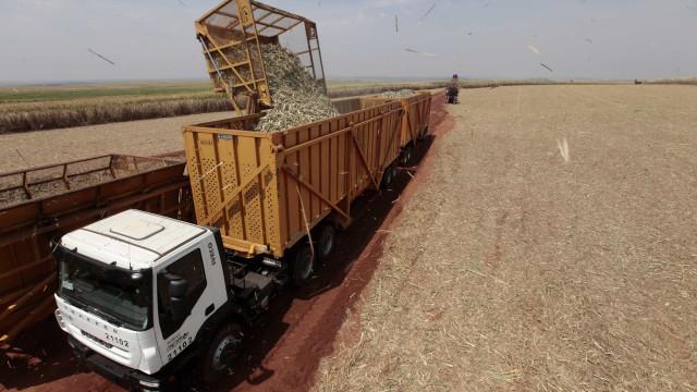 BNDES muda financiamento ambiental para atrair agricultores