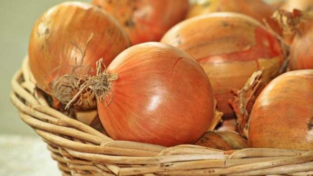 Ceagesp fica sem estoque; preços da cebola e da batata disparam