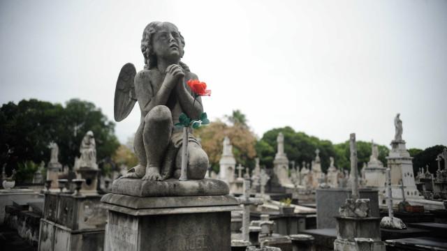 Startups inovam a morte com avatar pós-vida e velório online