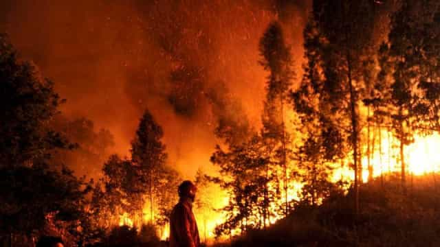 Portugal enfrenta um dos maiores incêndios florestais dos últimos anos