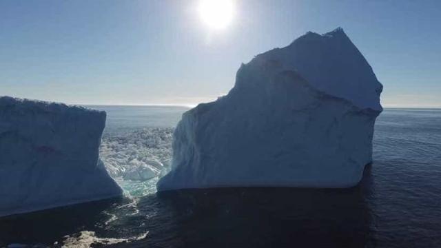 Cientistas explicam o perigo da 'neve sangrenta'