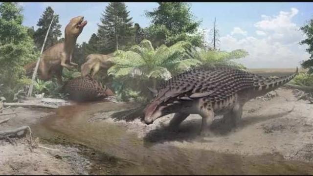 Estudo revela novo dinossauro 'blindado'