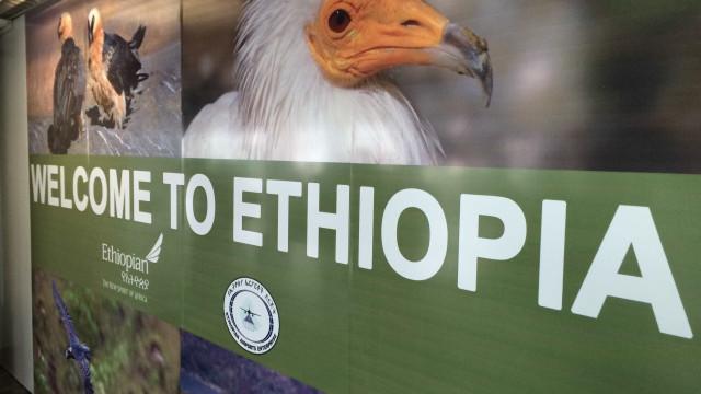 Polícia etíope obriga brasileiros  a defecar em imigração de aeroporto