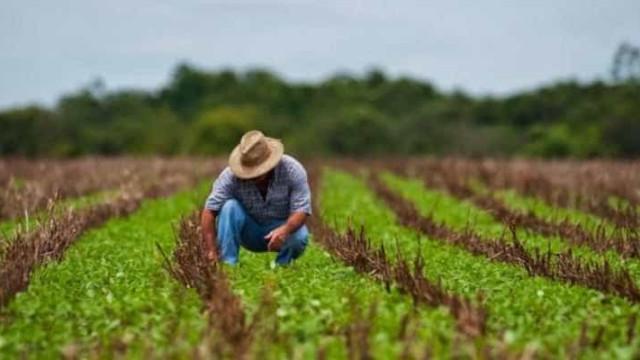 Caixa reduz juros de crédito rural em setembro