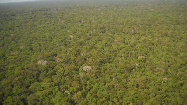MPF pede anulação de ato que libera mineração em reserva amazônica