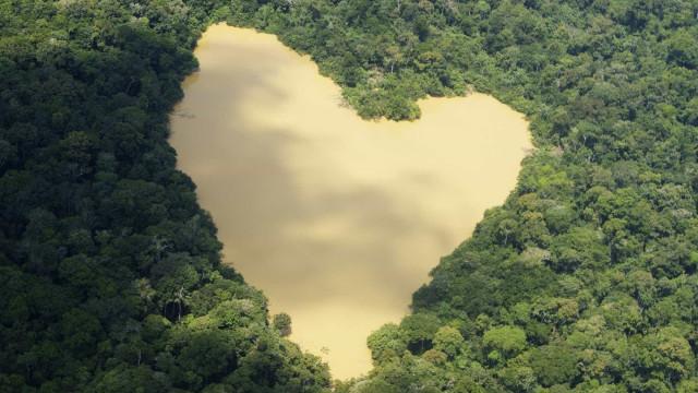 Justiça Federal suspende atos para extinção de reserva na Amazônia