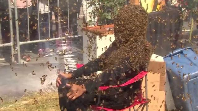Homem bate recorde de maior tempo com abelhas no rosto