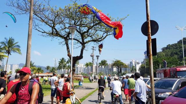 Homem fica pendurado em árvore durante pouso de 'paraglider'
