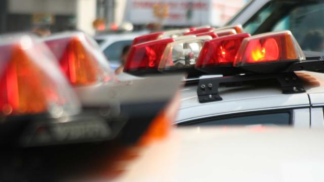Ação conjunta da polícia apreende 19 fuzis na Via Dutra