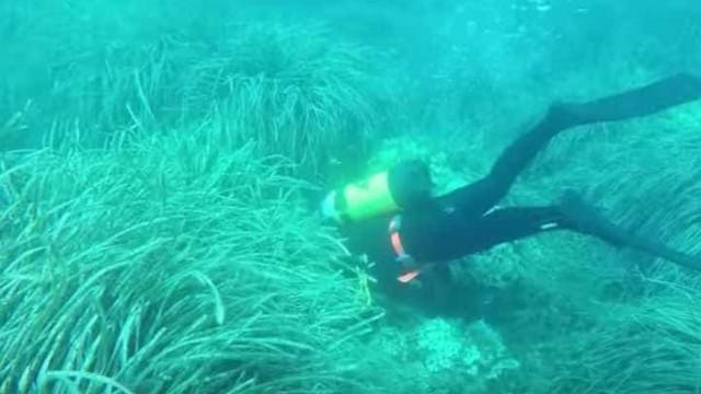 Arqueólogos encontram cidade inundada por tsunami há quase 17 séculos
