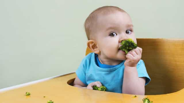 Mais que o leite: alimentos que ajudam na saúde óssea das crianças