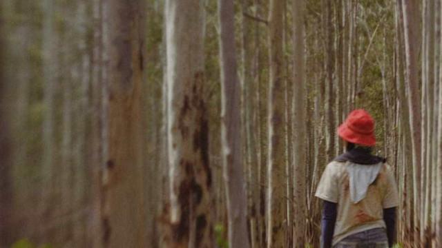 Curta brasileiro será exibido no Festival de Veneza; veja trailer