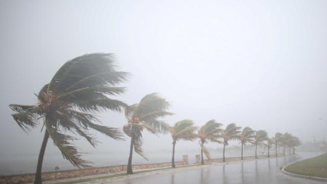 """""""Se decidirem ficar, não vão sobreviver ao Irma"""", adverte governador"""