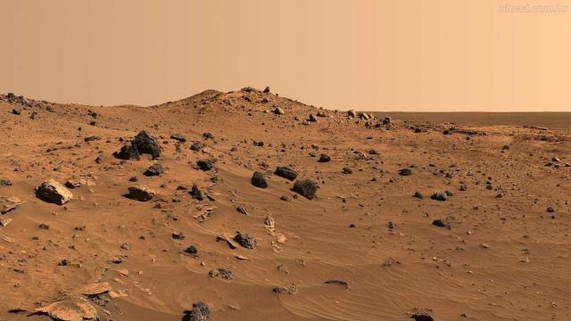 Cientistas determinam animal terrestre para viver em Marte