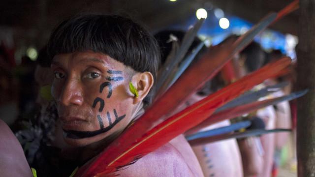 Garimpo ilegal ameaça tribos indígenas isoladas na Amazônia; fotos