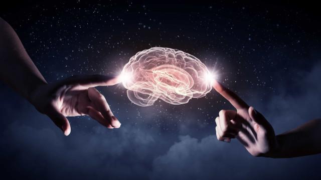 O que tem na sua cabeça? Fatos impressionantes sobre o cérebro humano
