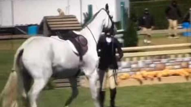 Bilionária pode ser punida por agredir cavalo em torneio de hipismo