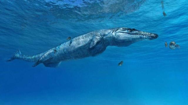 Revelado predador marinho pré-histórico antecessor de crocodilos