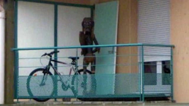 Google tira dos mapas foto de 'criatura estranha' que assustou usuários
