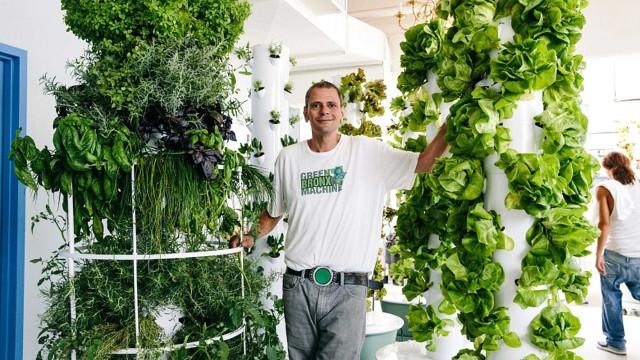 Hortas comunitárias: uma ideia que vem mudando o mundo