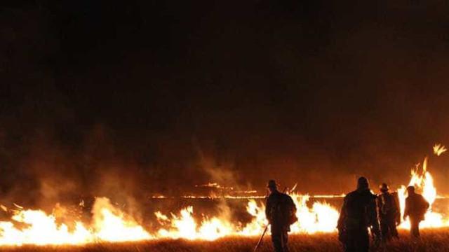 Incêndio na Chapada dos Veadeiros está sendo tratado como criminoso