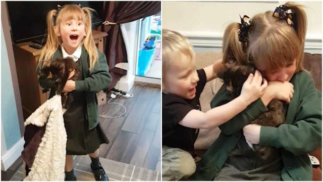 Menina chora ao ser surpreendida com dois gatos no aniversário