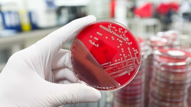 Aprenda a combater as superbactérias
