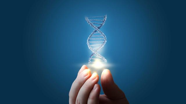 Câncer de pâncreas: sobrevivência pode estar nas 'mãos' de quatro genes