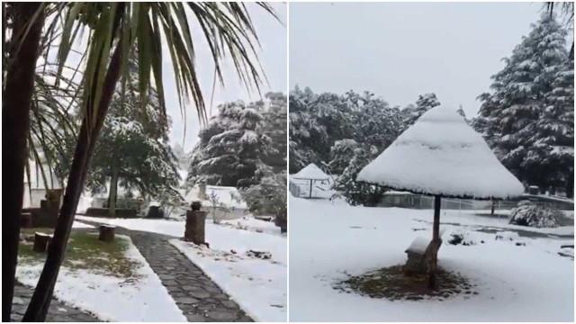 Neve cai em pleno verão na África do Sul; vídeo