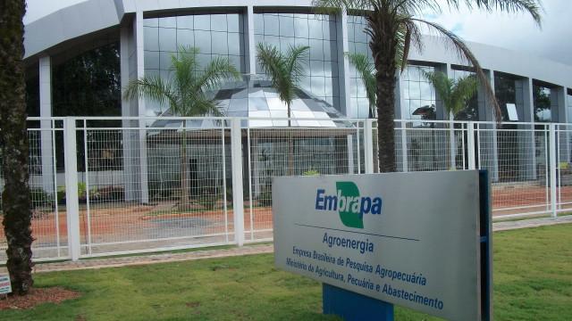 Embrapa enfrenta sua maior crise em 45 anos