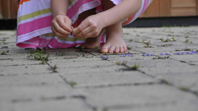 Quarto suspeito de estuprar criança de 8 anos é preso no Tocantins