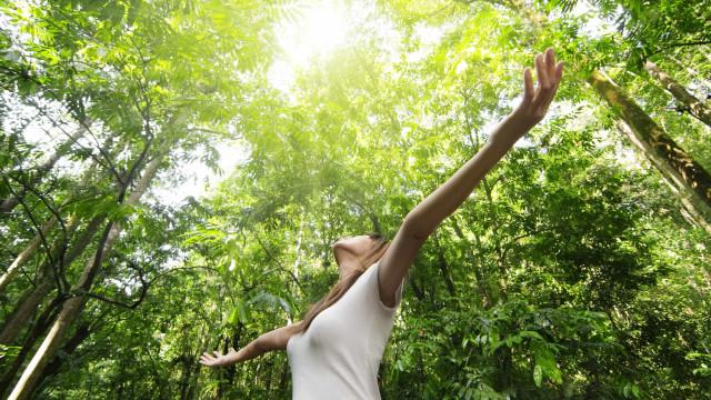 A importância do contato com a natureza para a sua saúde