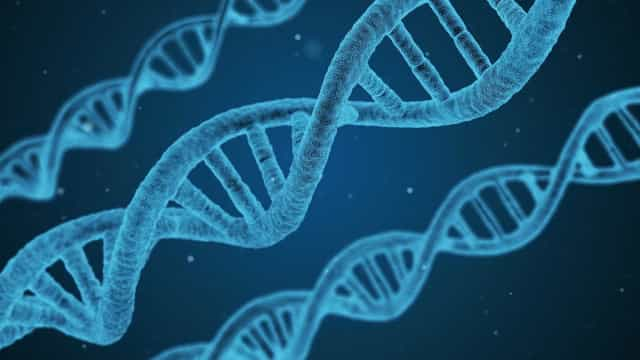 Genética da cor dos cabelos humanos é descoberta por cientistas