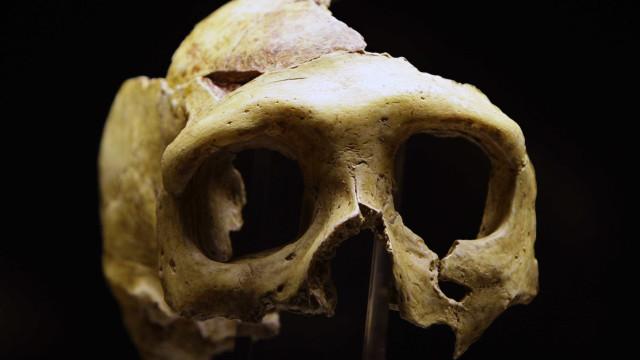 Neandertais eram artistas; descoberta derruba barreira