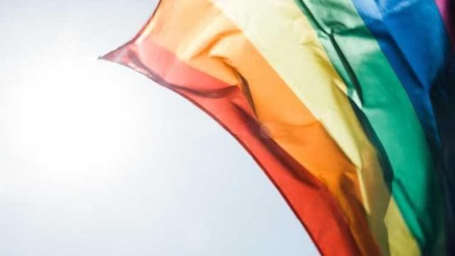 Candidatos LGBT em busca de afirmação política