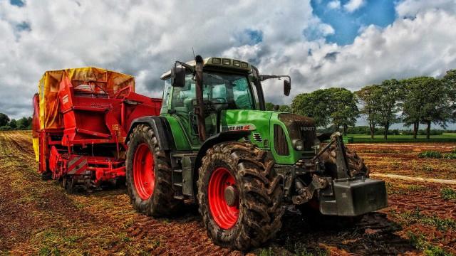 Chuva no Nordeste permitirá produção de 4 milhões de toneladas de grãos