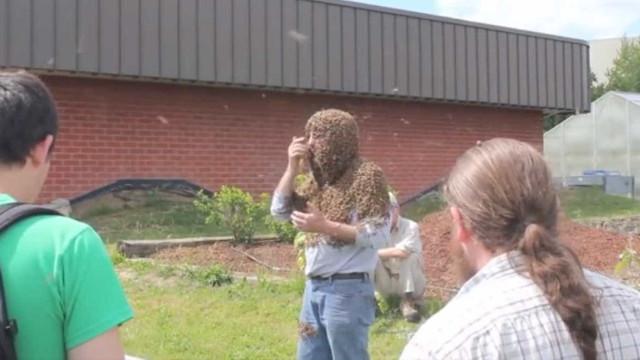 Bizarro! Homem dá aula de apicultura coberto de abelhas