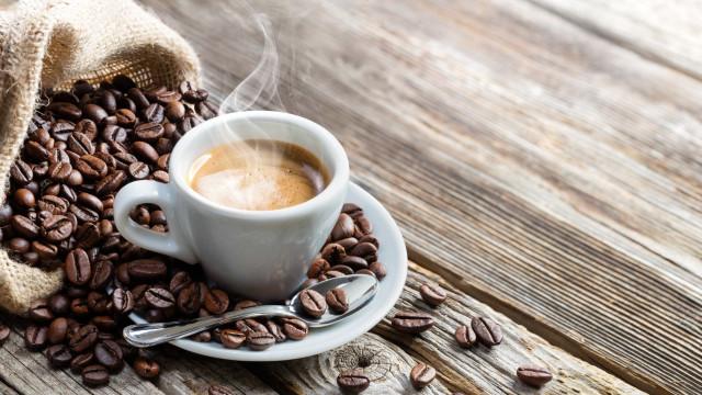 60% das espécies de café selvagem correm risco de extinção