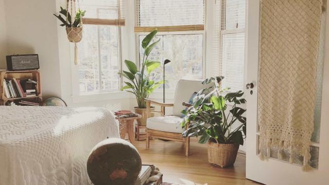 5 dicas para manter a casa limpa e a saúde em dia no outono