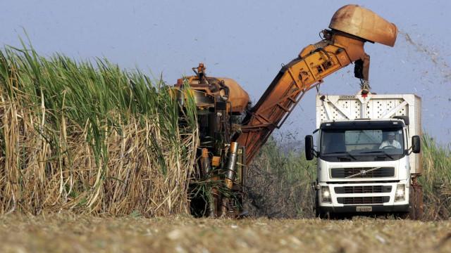 Ministros da Agricultura do G-20 criticam protecionismo